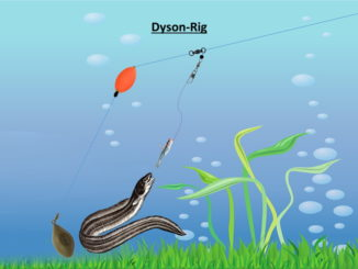 dyson-rig-aalangeln
